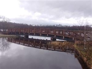 Bridge at country park N.Lanarkshire (38K)